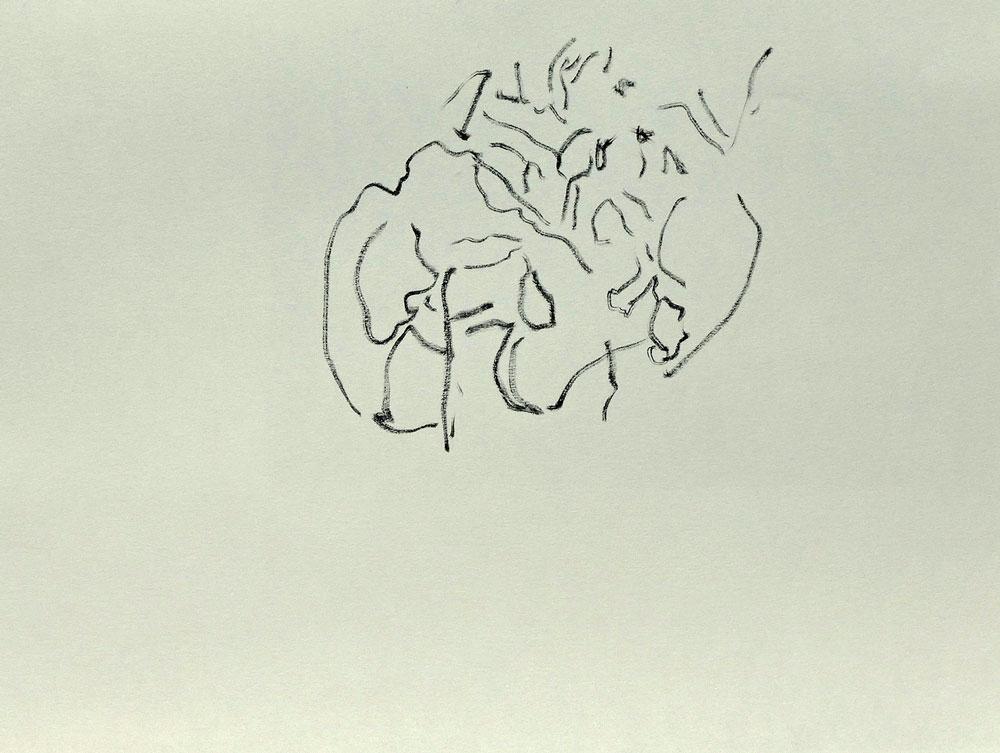 Serie-I-4-Schetsen-Innerlijk-landschap-met-Rontgen-foto-.-Inkt-op-papier.-21-x-30-cm-2020